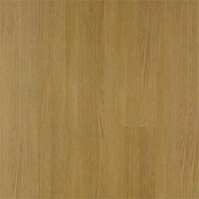 Floorpan Himalaya (C64)